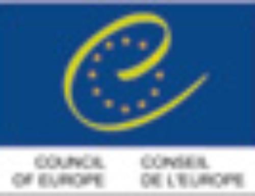 CDMSI Council of Europe EAVI